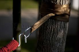 Hammock Bliss Tree Straps Hammock Drink Holder Hammock Sky