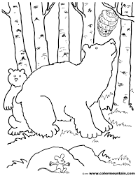 honey bear coloring page create a printout or activity