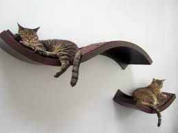 cat wall shelves ikea cat climber pinterest cat wall shelves