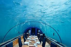 chambre aquarium restaurant aquarium le restaurant sous l eau