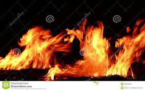 fire burning in the fireplace loop stock video stock footage