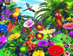 designs tag wallpapers page 2 gardening butterfly dreams