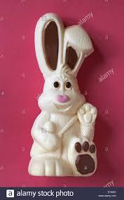 white chocolate bunny thorntons harry hopalot white chocolate easter bunny rabbit