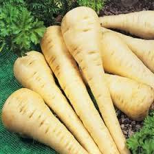 san diego master gardeners vegetable planting guide parsnip