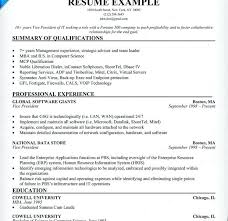 information technology professional resume information technology resume examples information technology it