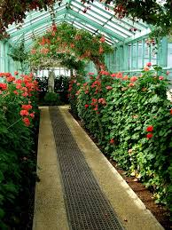 home design wonderful indoor garden inspiring designs to make you