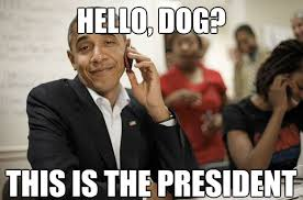 Obama Dog Meme - image 428830 barack obama know your meme