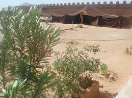 camel tents camel tents picture of aghbalou ramlia auberge merzouga