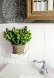 Best Plants For Bathroom Flowers For Bathroom 48 Bathroom Interior Ideas With Flowers