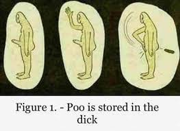 Poo Meme - poo is stored in the dick image imgur internet meme meme