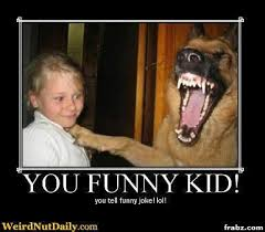 Hysterical Memes - terrified kid hysterical dog meme generator captionator caption
