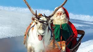 christmas reindeer reindeer of santa claus in lapland finland secrets of