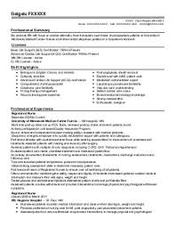 Marketing Manager Resume Template Rampd Manager Resume Sample Thesis Paper Friendship Sujet