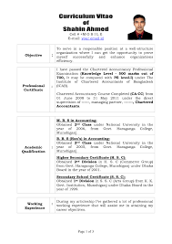 Resume Sample Cpa by Free Resume Templates Best Professional Cv Template