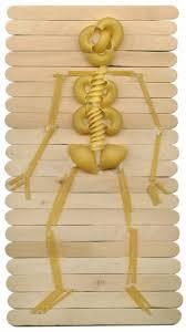 halloween vegetable skeleton make a skeleton with pasta skeletons pasta and craft sticks