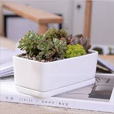 Ceramic Succulent Planter by White Ceramic Rectangular Flower Pot Modern Minimalist White
