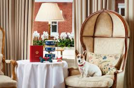 we accept pets pet friendly hotels b u0026 bs self catering