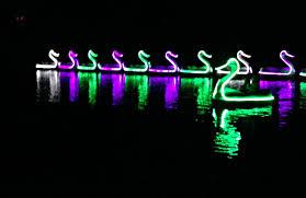 illuminated swan boats at roger williams park providence daily dose