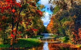 beutifull photo collection beautiful autumn park and