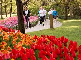 tulip festival half marathon