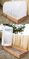 Homemade Garden Box by 129 Best Garden Images On Pinterest Gardening Vegetable Garden