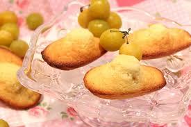 cuisiner les mirabelles madeleines aux mirabelles pour ceux qui aiment cuisiner