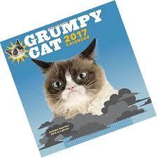 Grumpy Cat Mini Wall Calendar - calendars