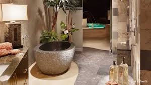 Spa Like Bathroom Designs Bathroom Beautiful Spa Like Master Bathrooms Attractive
