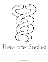 they are snakes worksheet twisty noodle