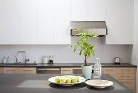 Simple Kitchen Ideas Home Design Fabulous Net Zero Energy House By Klopf Architecture