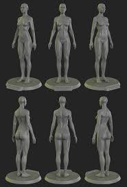 Female Anatomy Figure 3d Female Anatomy Tag 3d Total Female Anatomy Figure Human Anatomy