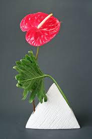 keith stanley floral design studio anthurium and philodendron