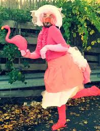 Flamingo Halloween Costume Adults 143 Ideas Building Costume Budget Local Thrift