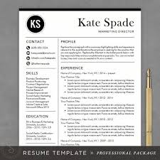 free professional resume templates professional resume template cv template mac or pc modern