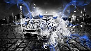 white tiger and collection 11 wallpapers