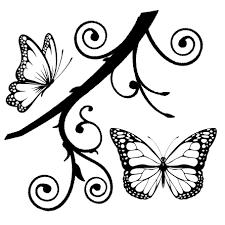 butterfly wallpaper wonderful darkness