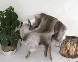Reindeer Hide Rug Reindeer Hide Throw U0026 Rug Rare Light Grey Gray The Erva
