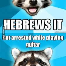 Pun Meme - bad pun raccoon meme 100 images bad pun compilation raccoon