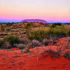wedding backdrop australia 8 best nt outback weddings images on wedding reception