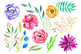 watercolor flowers png clipart by water design bundles