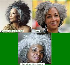 Silver Gray 20 Afro Kinky Curly Human Hair Braiding