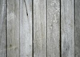 Gray Laminate Wood Flooring Free Images Tree Nature Texture Plank Floor Old Wall
