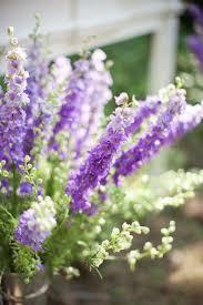 wedding flowers kansas city 40 best purple flowers images on purple flowers