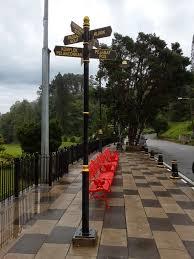 my heart soars fraser u0027s hill part 1 the 12 hour trek on pine