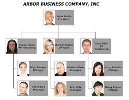 100 corporate organization chart template infographic
