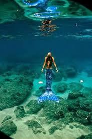 woman professional mermaid pics incredible