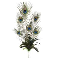 French Feathers Home Decor And Accessories by Ashland Feather Pick Peacock