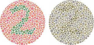 How To Test For Color Blindness Accessibility In Digital Design Drake Cooper