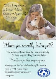 coping with loss of pet coping with pet loss essex humane societywindsor essex