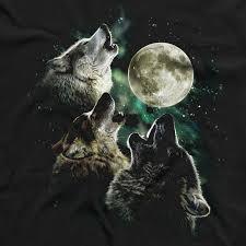three wolf moon memes t shirt designs printed in australia